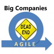 Agile Buy-in