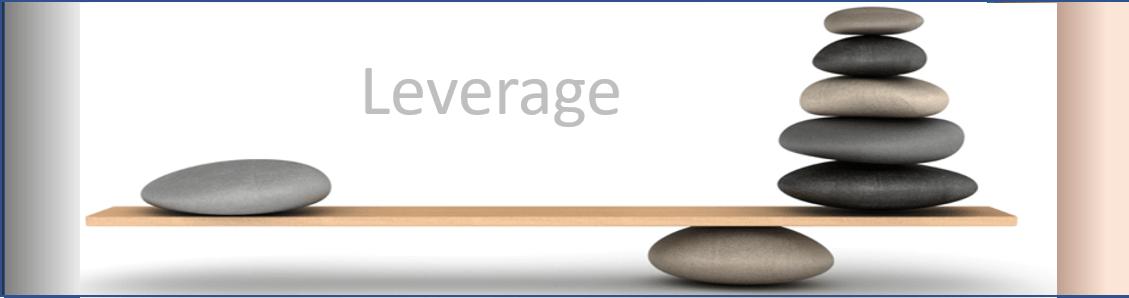 Platform Leverage